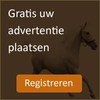 Paard verkopen